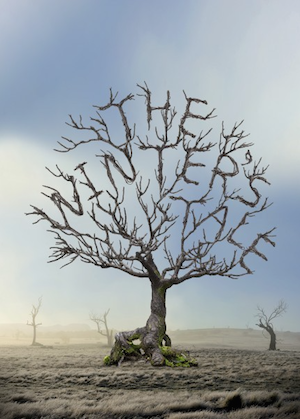 The Winters Tale - poster